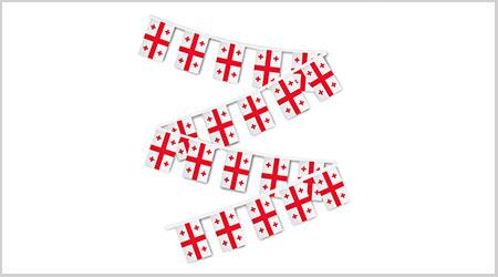 Georgia String Bunting Flags