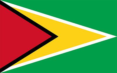 Guyana National Flag 150 x 90cm