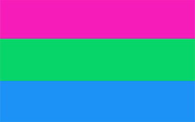 Polysexual Flag - Pride LGBT 150 x 90cm