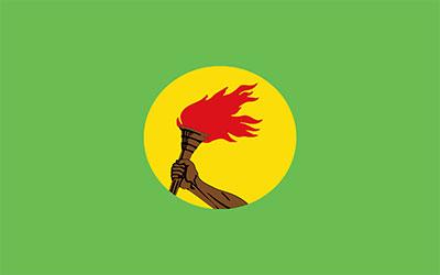Zaire National Flag 150 x 90cm